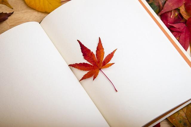 日頃、どんな姿勢で読書してますか?