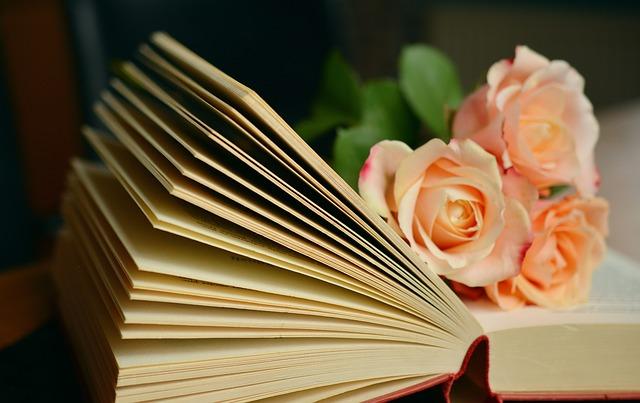 読書はこんなに素敵な事なんです!忙しい兼業主婦こそ読書を!