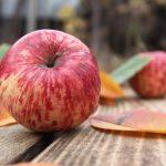 リンゴのすりおろし汁で便秘解消 妊婦