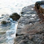 焼き海苔も葉酸あり